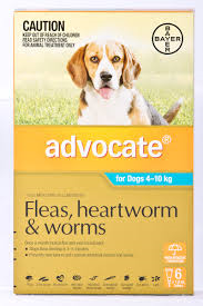 ADVOCATE DOG SMALL AQUA 6 PACK 4-10KG