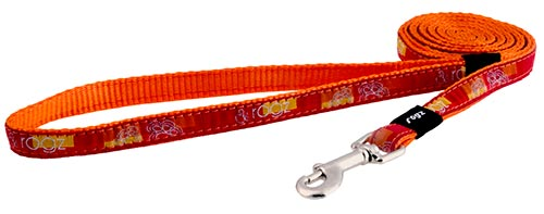BEACHBUM LARGE DOG LEAD TANGO PAWS