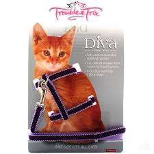 DIVA CAT HARNESS PURPLE VELVET