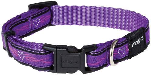 ARMED RESPONSE EXTRA LARGE DOG COLLAR IN PURPLE 