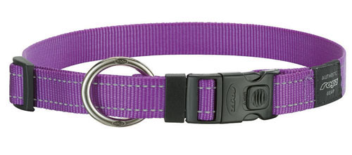 SNAKE MEDIUM DOG COLLAR IN PURPLE