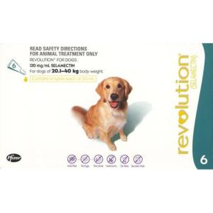 REVOLUTION DOG 20-40KG 6PK