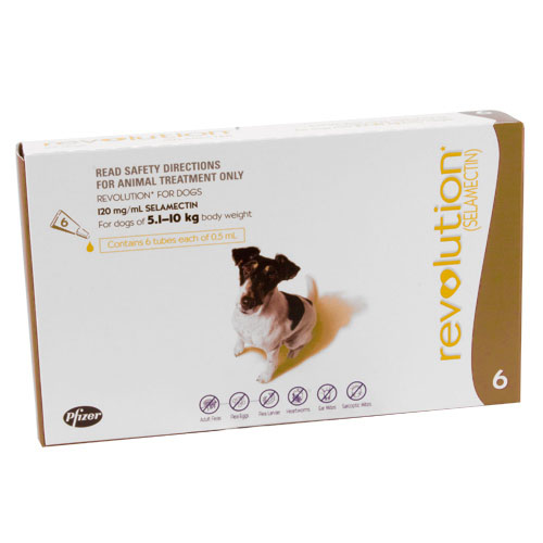 REVOLUTION DOG 5-10KG (BROWN) 6PK