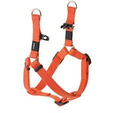 SNAKE MEDIUM  DOG STEP IN HARNESS IN ORANGE